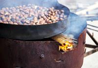 Roasting Chectnuts
